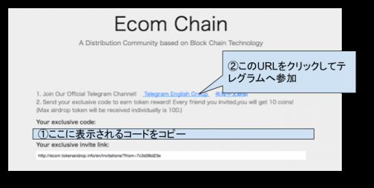 Ecom Chain1